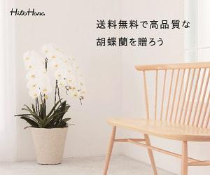 お祝いからお供えまで幅広い用途で活用される胡蝶蘭販売サイト【HitoHana】