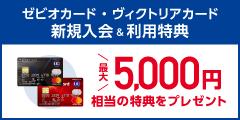☆ゼビオカード・ヴィクトリアカード☆