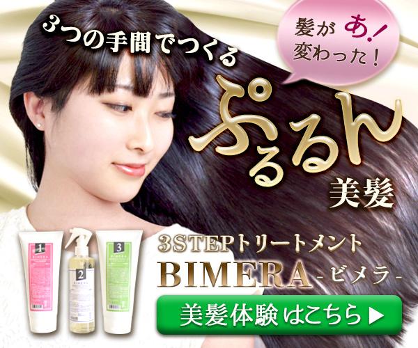 BIMERA